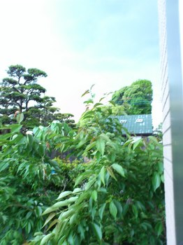 2012.5.6.(日)今日のお天気.JPG